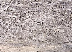 Dammen Und Entsorgen Von Heraklithplatten
